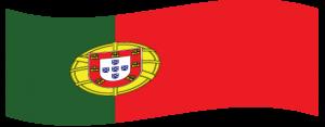 Tradutor Português-Inglês